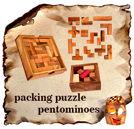 solution for packing systens and pentominoes puzzle
